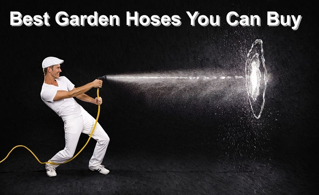 Best Garden Hoses You Can Buy